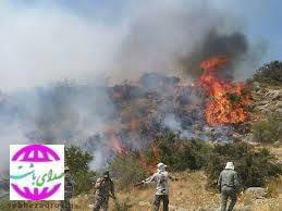 آتش سوزی جنگل ها و مراتع کوه خامی در گچساران مهار شد.