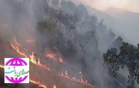 آتش سوزی منطقه حفاظت شده دیل در گچساران مهار شد.