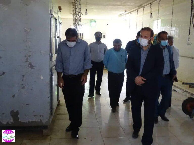 بازدید سرزده دادستان از کشتارگاه دام شهرداری باشت